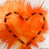 Heartwork - Orange